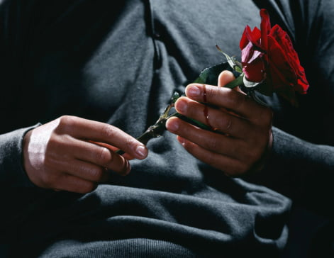 Man holding red rose, blood on fingers, mid section